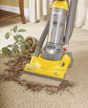 vacuuming dirt from fallen plant