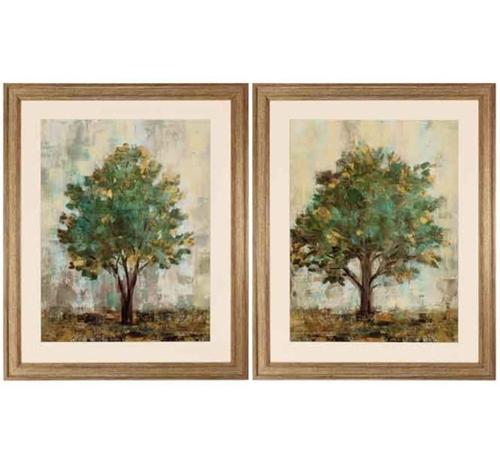 Picture of DREAM TREE PAIR