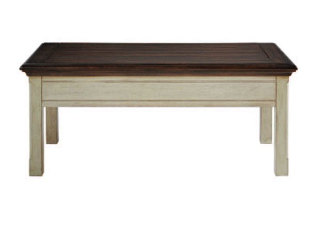 Attrayant MOUNT HOLLY STORAGE COFFEE TABLE