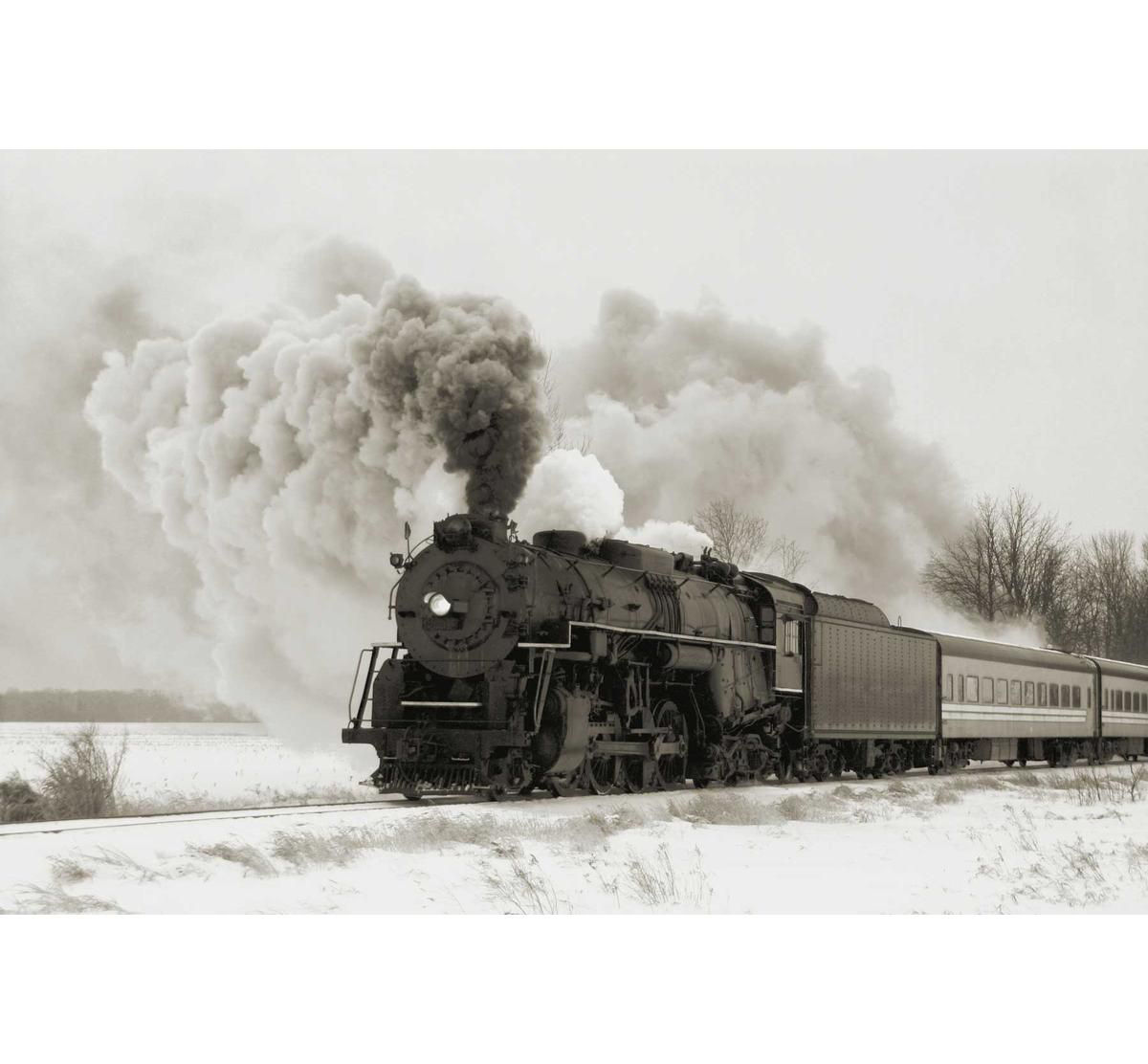 Picture of TRAIN ARRIVAL WALL ART