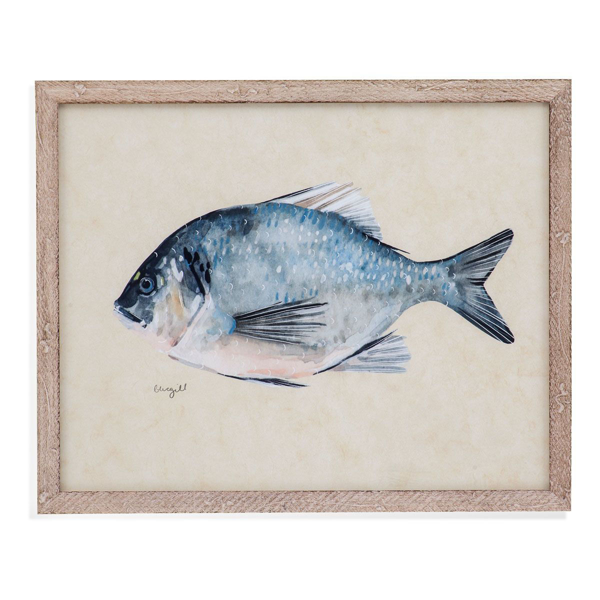 Picture of CROAKER WALL ART