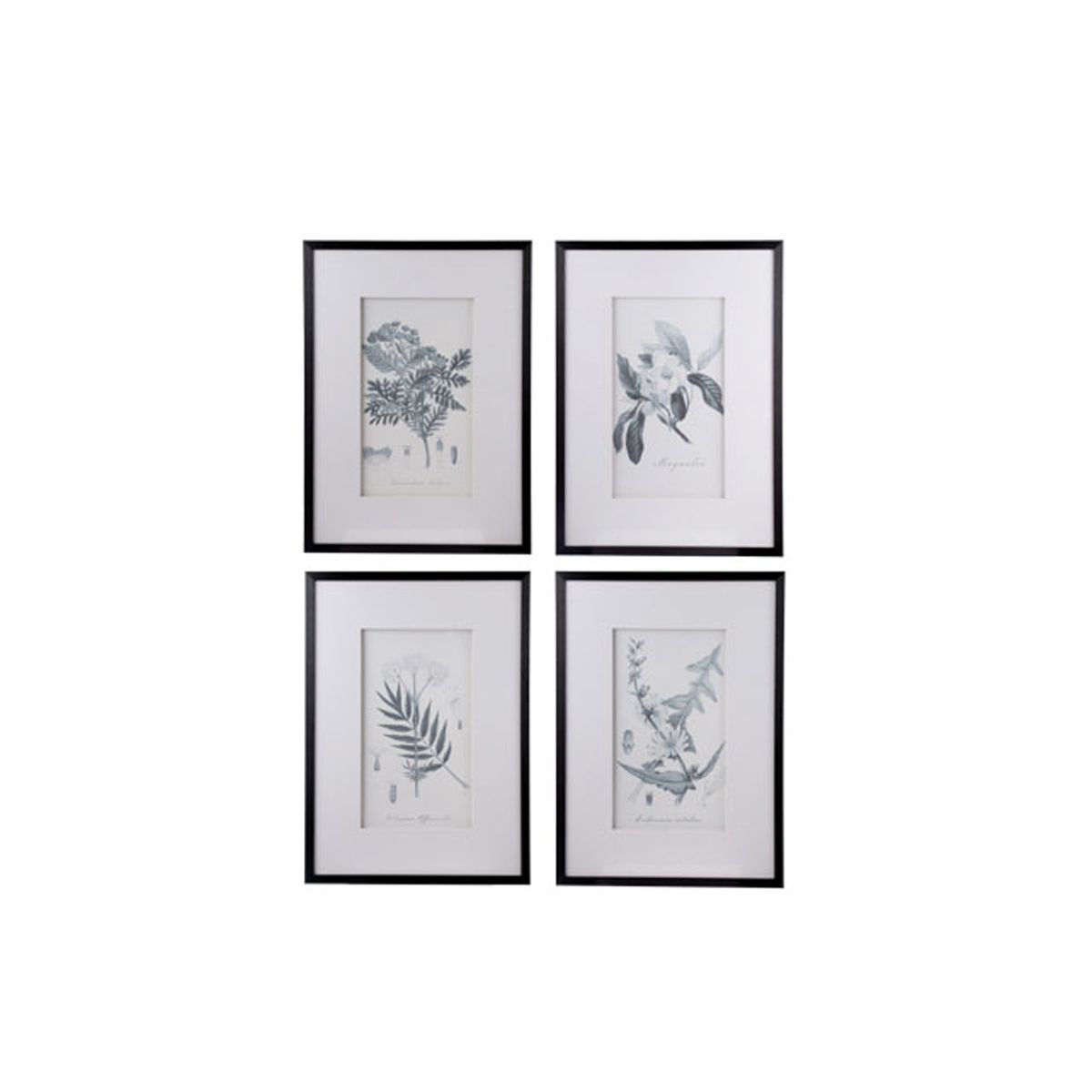 Picture of GARDEN PLANT WALL ART